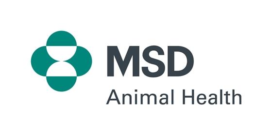 msd 동물약품