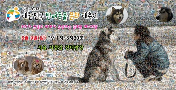 130607반려동물문화대축제1
