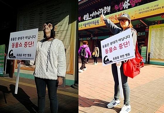 동물을위한행동_동물쇼중단