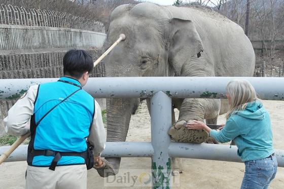 서울동물원_야생동물긍정적강화훈련