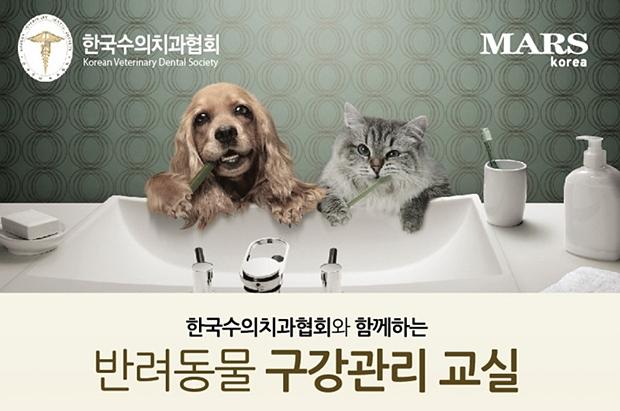 수의치과협회_마즈세미나2