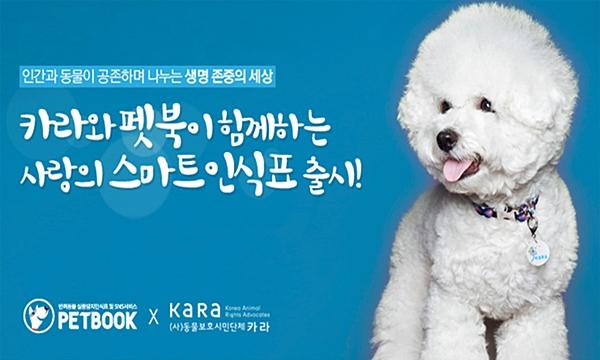 펫북_카라콜라보인식표