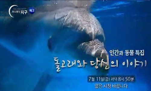 EBS하나뿐인지구_인간과동물특집1돌고래