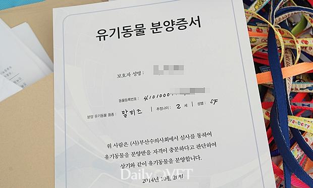 제2회부산유기동물가족만나기6_분양증서