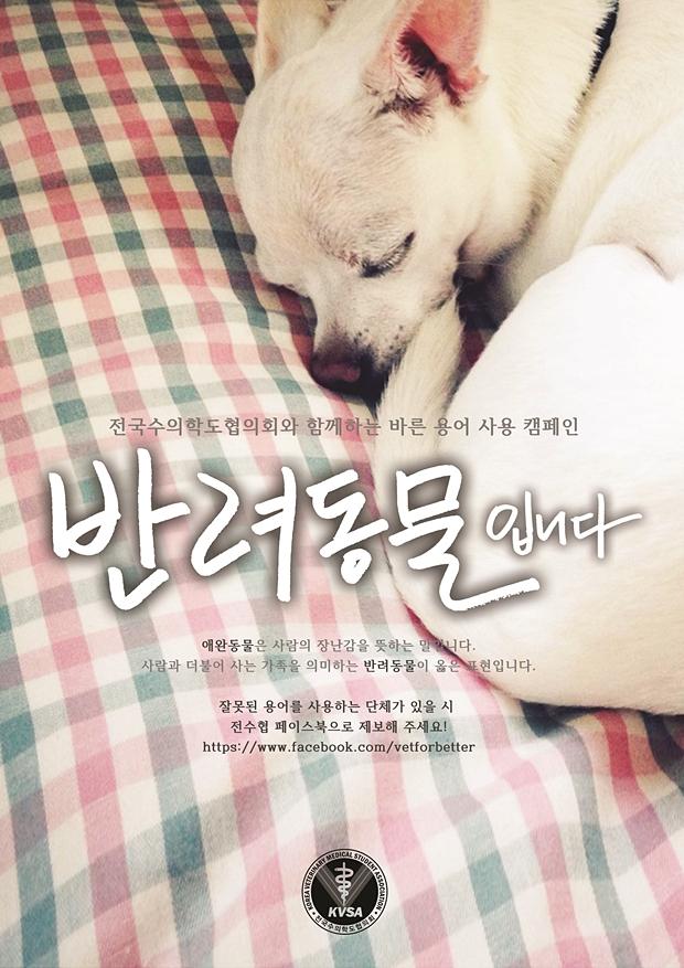전수협캠페인_반려동물