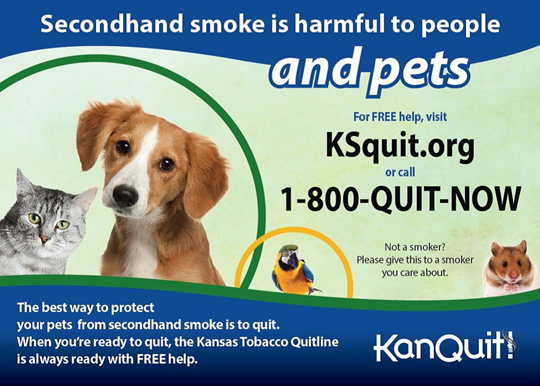 Secondhand-Smoke-and-Pets