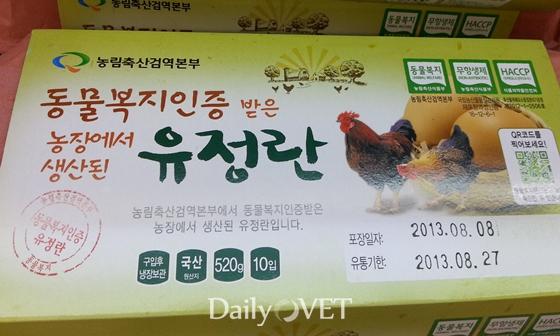 animal welfare egg_2