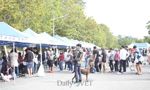 knuvet_2015petfestival