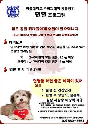 3년전 서울대 동물병원에서 시도했던 헌혈 프로그램
