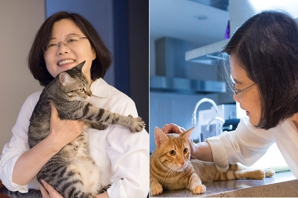 Tsai Ing wen_Cat