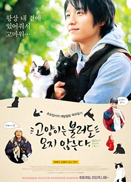 callcat_movie