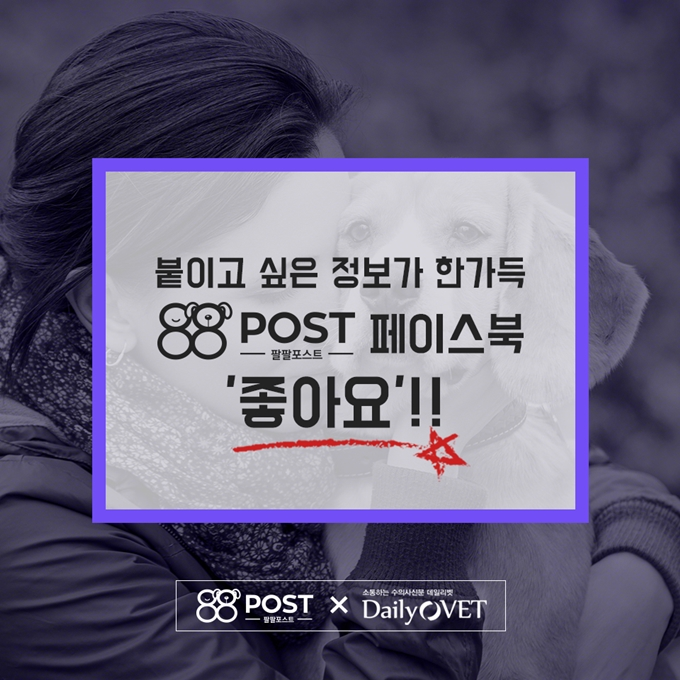 88_dailyvet_selfmed10