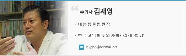 kimjaeyoung_profile2
