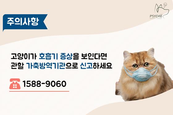 cat ai_psyche10