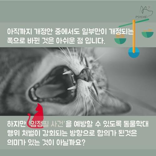 cat_lim10