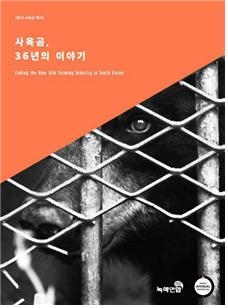 korean bear book