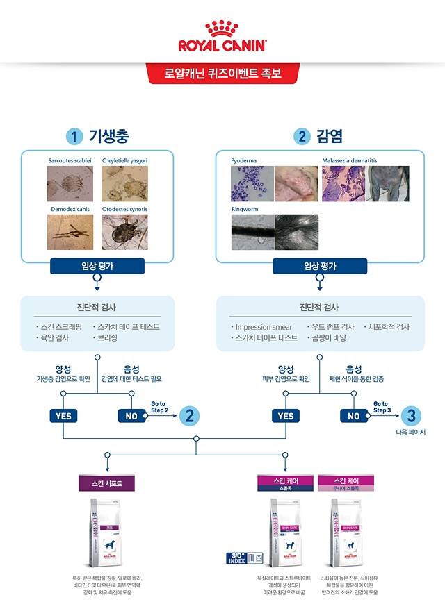 2017rcderma guideline1