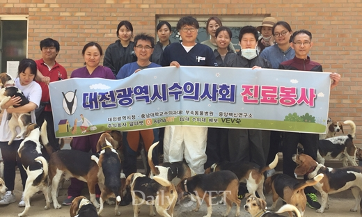 daejeonvet_beagles volunteer201704