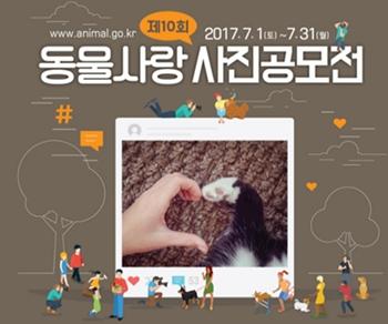 10th animal love photo competetion