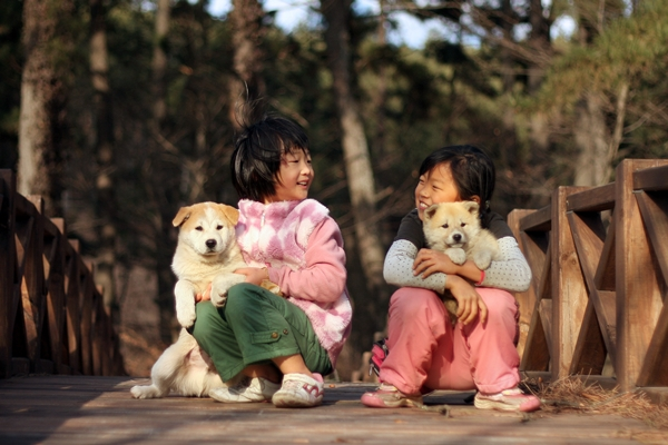 10th animal love photo7