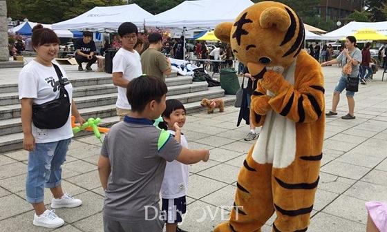 20170910 kangwon festival6