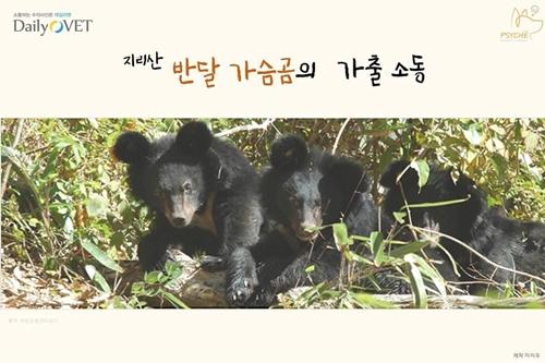 201709card_bear1