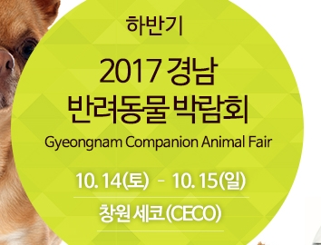 20171014gyeongnamCA fair