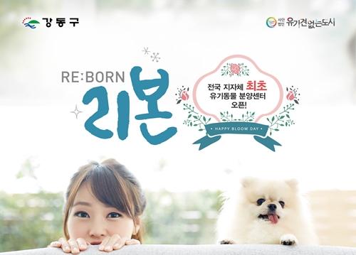 201711kangdong_reborn