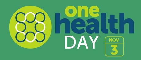 onehealth day logo