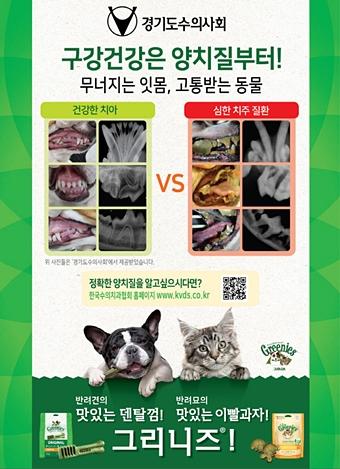 20171202gvma dental2
