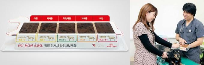 로얄캐닌이 제공하는 BCS 키트(왼쪽). 반려동물의 비만 정도를 설명하는데 도움을 준다(오른쪽).