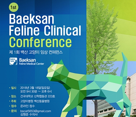 1st baeksan conference