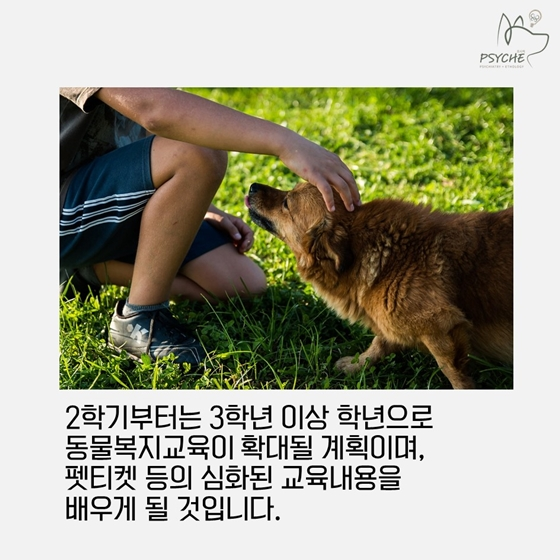 20180302animal protection edu6