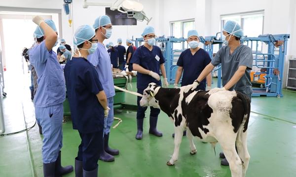 지난해 실시된 농장동물교육 심화과정 현장