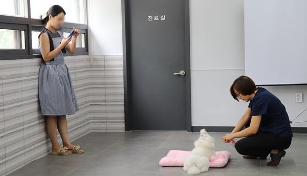 넓은 공간이 마련된 병원 내에서 반려동물 교육방법을 지도한다