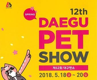 20180518daegu petshow1