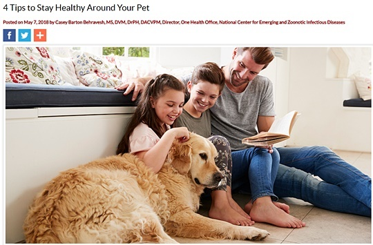 4tips to stay healthy around your pet_cdc
