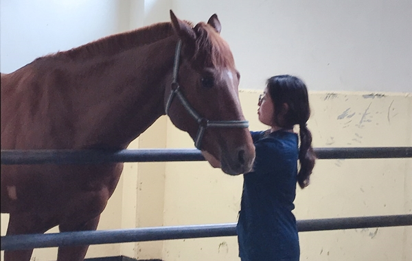 180614 horse2
