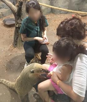 20180625aware_zoo2