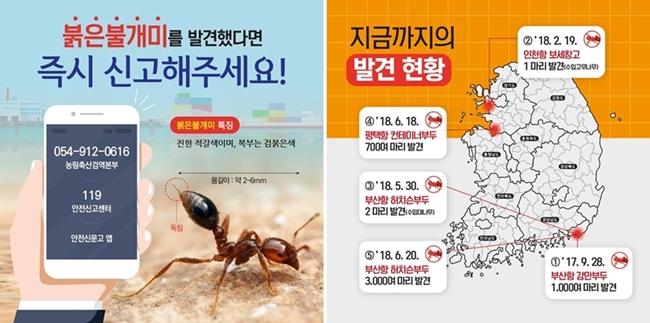 (자료 : 농림축산검역본부)