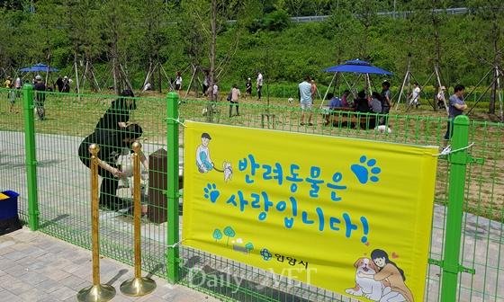 20180708anyang pet green park1