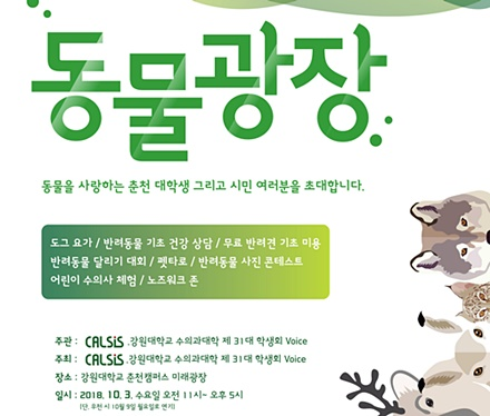 2018kangwon festival1