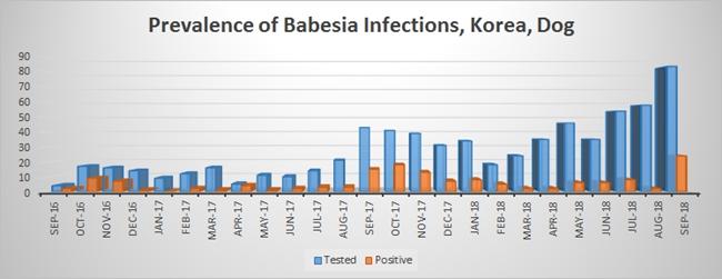 2016-2018 월별 바베시아 양성 분포