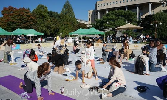 20181003kangwon festival3