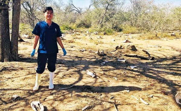 동물의 무덤(Grave Yard of animal)에는 많은 육식동물이 사체를 먹으러 찾아온다.  코끼리들이 죽은 동료의 뼈를 가지고 추모하는 모습도 볼 수 있다고 한다.  우리는 이 곳에서 코뿔소 부검을 실시했다.