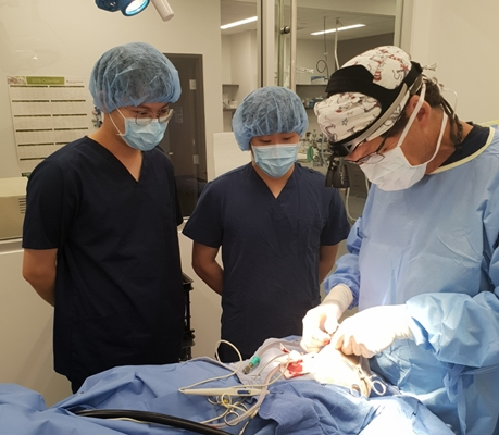 외과 전문의(Surgeon) 집도의 전십자인대단열로 인한 Lateral Suture 수술 참관.  미국에서는 외과 전문의가 로컬 병원에서 케이스가 들어올 때마다 개인 장비를 챙겨 수술을 하며 프리랜서로 지내며 경우가 많다고 한다.