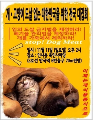 20181111dog meat campaign