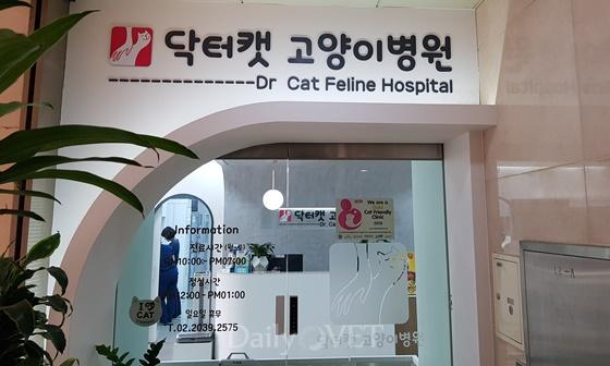 interview_dr.cat1