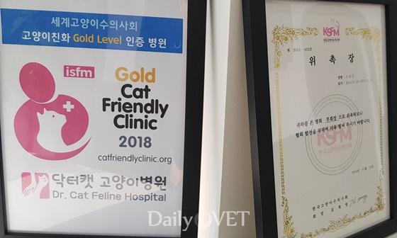 interview_dr.cat3