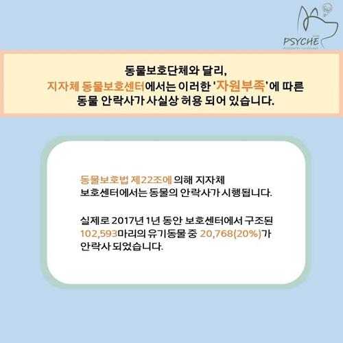 20190123euthanasia card6